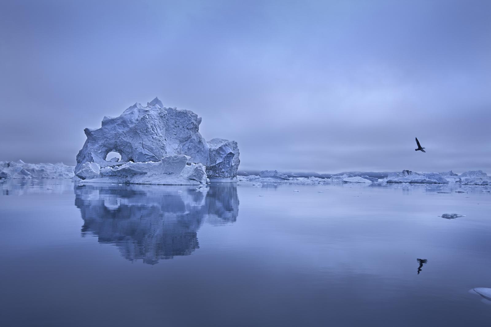 Destacado - Fotografiar el ártico